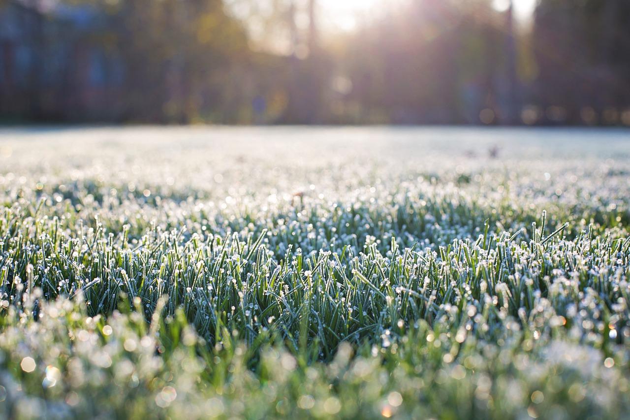 Wettervorhersage: frostig & kalt